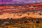 Painted Desert Yellow Grass Lands Orange Sandstone Red Moab Faul — Stock Photo