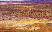 Painted desert gele gras landt oranje rode zandsteen vurige bont — Stockfoto