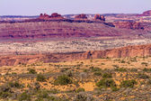 Yellow Grass Lands Moab Fault Arches National Park Moab Utah — Stock Photo