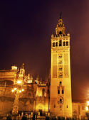Giralda Bell Tower Seville Cathedral Rainy Night Spain — Stock Photo