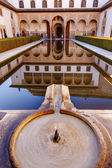 Alhambra Courtyard Myrtles Fountain Pool Reflection Granada Anda — Stock Photo