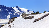 Hikers Snowfields Artist Point Glaciers Mount Shuksan Washington — Stock Photo