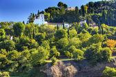 Generallife Alhambra White Palace Trees Garden Granada Andalusia — Stock Photo