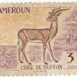 Постер, плакат: Republic of Cameroon