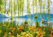 Flower shore and mountains, Montreux. Switzerland — Stock Photo
