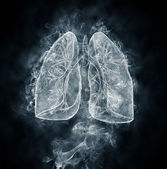 Human lungs and bronchi — Stock Photo