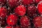 Körsbär i vatten — Stockfoto