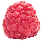 One ripe raspberry — Stock Photo