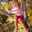 Small child climbed on tree — Stock Photo