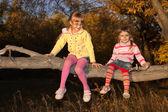 Small children to climb a tree — Stock Photo