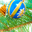 Branch of coniferous with glass ball — Stock Photo