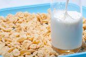 Corn flakes with milk — Stock Photo