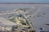 Shards of ice — Stock Photo