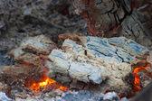 Het grill — Stockfoto