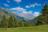 Vista della valle — Foto Stock
