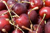 Texture of cherries — Stock Photo