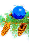 Branch of coniferous tree with glass ball — Stock fotografie