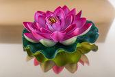 Magenta lilies — Stock Photo