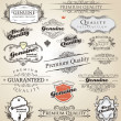 Premium Quality and Satisfaction Guarantee vintage Label — Stock Vector #9570090