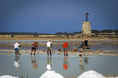 Saltworks with workers, Italy — Stock Photo