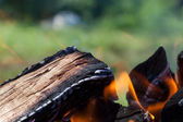 Bonfire on the nature — Stock Photo