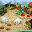 Handmade toy farm — Stock Photo #12247369
