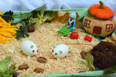 Handmade toy farm — Stock Photo