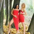 Two nice girl outdoor at autumn time — Foto Stock