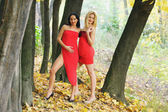 Two nice girl outdoor at autumn time — Foto de Stock