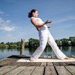 The tai chi - Stock Photo