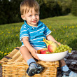 Picnic boy — Stock Photo