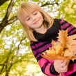 Girl in the autumn park — Stock Photo #13905205