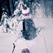 Winter hiking - Stockfoto