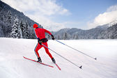 Cross-country skiing — Photo