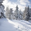 Schneeberg - Stock Photo