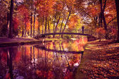 Park in fall — Stock Photo