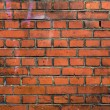 Stoned wall — Stock Photo #24516293
