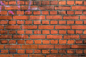 Stoned wall — Stockfoto