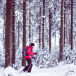 Stock Photo: With snowshoes in winter forest