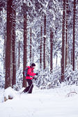 With snowshoes in a winter forest — Stock Photo