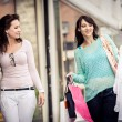 Shopping in the city — Stock Photo #27503887