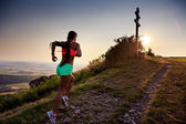 Running to the peak — Stock Photo