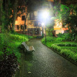 Tropical park by night — Stock Photo