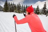 Cross-country skiing — Stockfoto