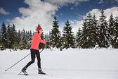 Esqui cross-country — Foto Stock