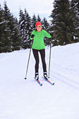 Cross-country skiing — ストック写真