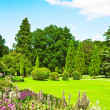 English garden — Stock Photo