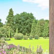 Stock Photo: Garden view