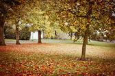 Herbst-szene — Stockfoto