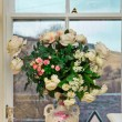 Flowers in the window — Stock Photo #38673027